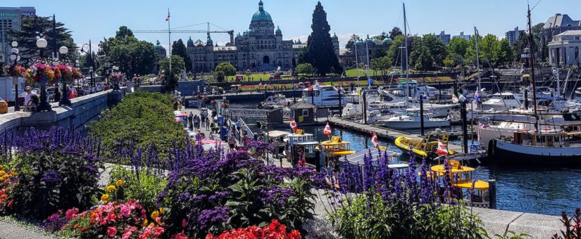 Daitan Canada Part of the Global Entrepreneurial Hub Emerging in Victoria, BC